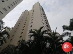 Apartamento para alugar com 2 dormitórios em Tatuapé, São paulo cod:53876