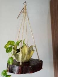 Vasos , Painéis e plantas