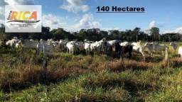 Fazenda com 140 Hectares em Candeias do Jamari/RO à venda, a 14 km da cidade