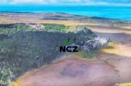 Fazenda à venda, 2100000 m² por R$ 21.000.000,00 - Santo André - Santa Cruz Cabrália/BA