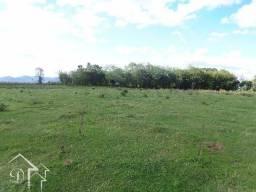 Chácara à venda em Zona rural, Santa maria cod:10022