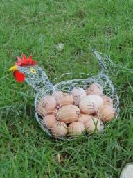 Vendo galinhas caipiras, capoeirão,embrapa 051
