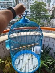 Gaiola azul e de transporte para calopsita