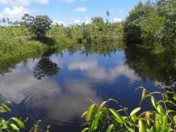 Granja com 7,5 há perto da entrada de muriú,casa, riacho perene, tanques para criar peixes