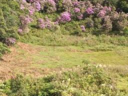 Terreno 5 hectares- Anitápolis