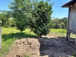 Fazenda pecuária 4400 ha camapuã