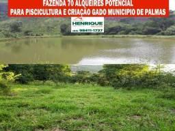 Fazenda de 70 alqueires município de Palmas com 9 tanques de peixes e muita pecuaria