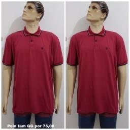 Promoção 03 camisas Polo por 155,00
