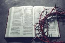 Biblias e livros infantis