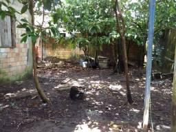 Terreno em Ananindeua