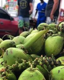 Distribuidora de coco r$ 1,80