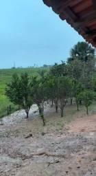 Vendo-Terra na Região de Marará e Itupiranga