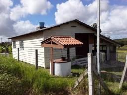 Velleda oferece casa em terrenão a somente 350m do asfalto aceito troca litoral