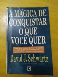A mágica de conquistar o que você quer