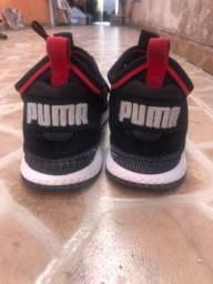 Puma 41