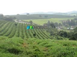 Fazenda à venda - 460 hectares - são gonçalo do sapucai (mg)