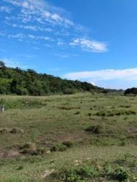 Alugo ou arrendo sítio na Barra do Jucu
