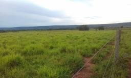 Fazenda 7.400 ha em Nobres Mato Grosso