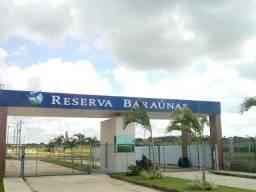 Lote Baraúnas