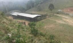 Fazenda 300 mts da BR 116