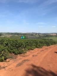 Fazenda de café - 39 hectares - região de lavras (mg)