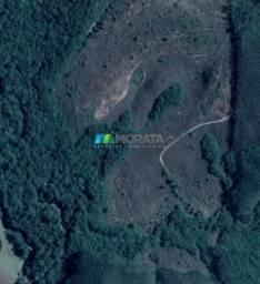 Fazenda à venda - 33 hectares - região de lavras (mg)