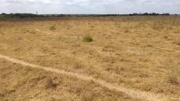 Fazenda na Bahia. Parceria para energia solar