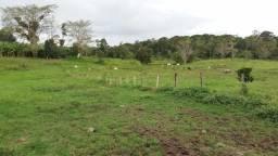 Fazenda, Sítio e Terrenos