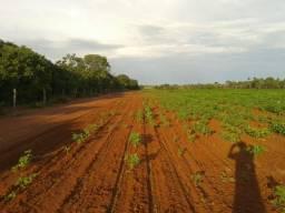 Arrendo Fazenda no Tocantins. Sudeste