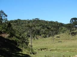 Sitio com 6 hectares em Alfredo Wagner