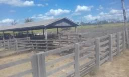 Sítio à venda com 3 dormitórios em Rural, Novo progresso cod:V11166