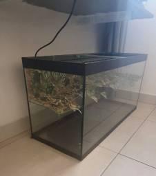 Aquaterrário