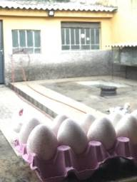 Ovos de peruas