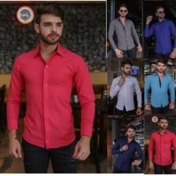 Camisas social masculina, tricoline, algodão 60%,  Oferta!