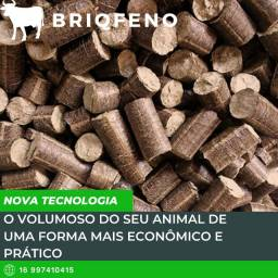 Briqfeno