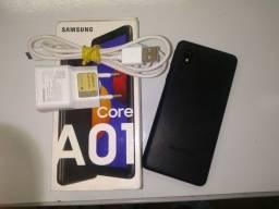 A01 core.