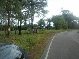 Fazenda 1.270hectares 110km de Belém