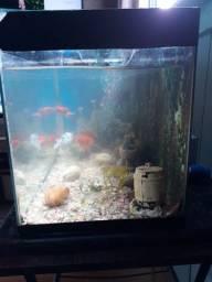 Vendo aquário 40 litros por 400 reais