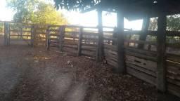 Fazenda 250 alqueires na bacia do Araguaia