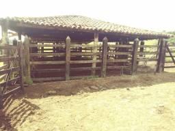 Vendo excelente fazenda em Presidente tranquedo Neves