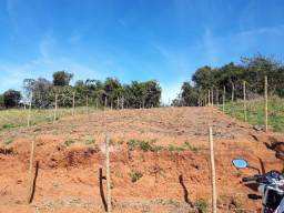 Terreno Plano 10 x 25 mts Loteamento São Gabriel- B. Palmela