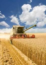 FN Crédito rural fácil liberação