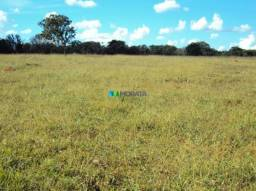 Fazenda à venda - 300 hectares - pitangui (mg)