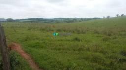 Fazenda à venda - 301 hectares - lavras (mg)