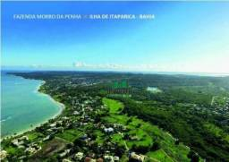 Fazenda rural à venda, loteamento canto da ilha, itaparica.