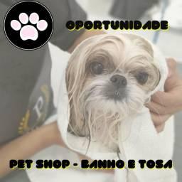 Pet Shop - Banho e tosa