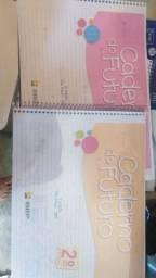 Alfabetização e cadernos do futuro do 1 ao 9 ano
