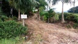 Sete Barras, 10 Alq.  com Casa, Luz, Agua, pastagem e pupunha.
