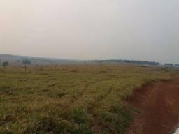 Fazenda area para pasto