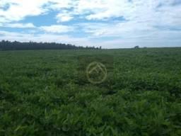 Fazenda à venda, 1621400 m² - Zona Ruaral - Renascença/PR